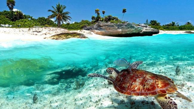 Пляжи Северной Мексики