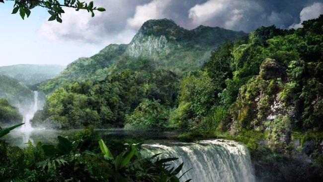 Южная Америка. Республика Перу. Парк «Ману»